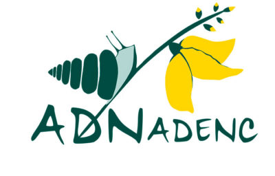 Iniciem un nou projecte: ADN ADENC